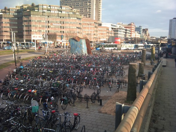Bomenkap fietsenstalling utrecht centraal (2011-03-09 @17:25)