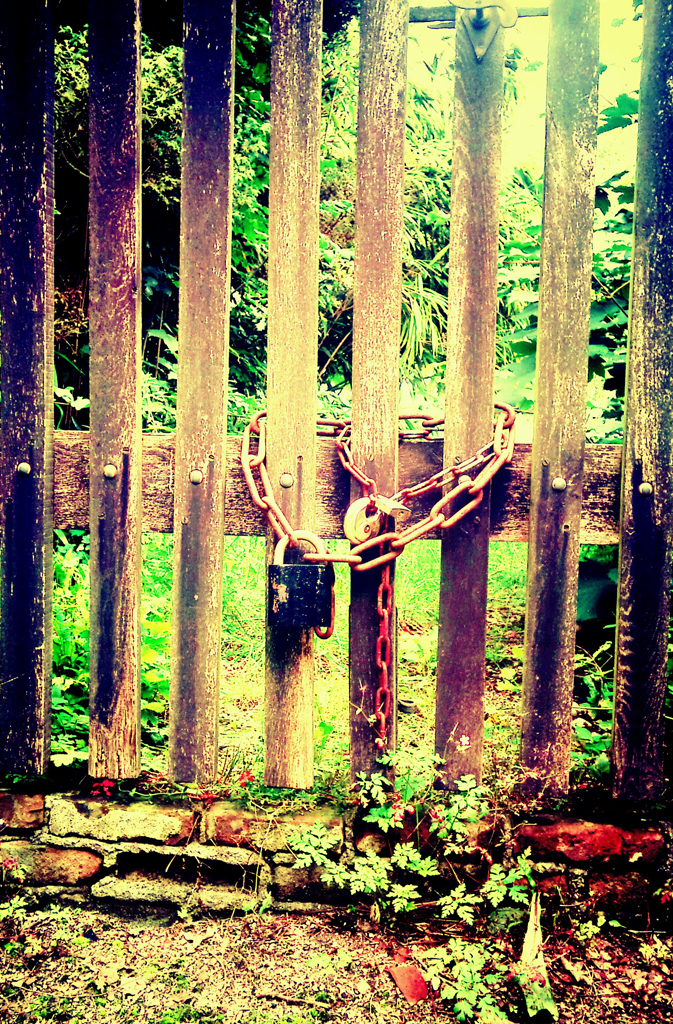 Zwaar slot voor zo'n gammel hek. (@ kasteel Sypesteyn)