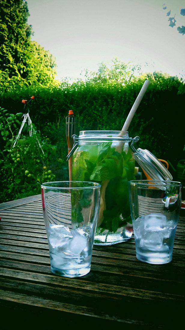 Verkoeling van Munt & Melisse ijswater @ 19-08-2012 16:53u