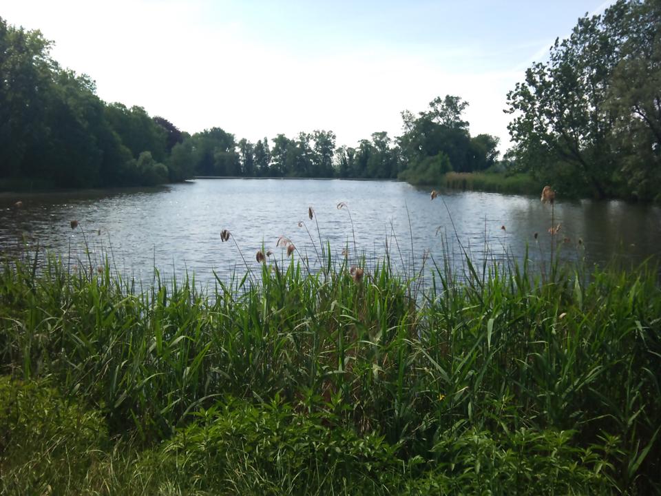 Aanrader voor een zeer relaxed plekje: Hollands Gat (nabij Assenede, B / Sas van Gent, NL)(08-05-2011 @ 12:50)